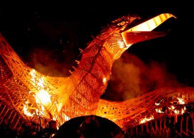 Fenix Robodock burning 2010